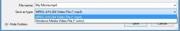 Seleccionar el formato deseado para convertir WLMP