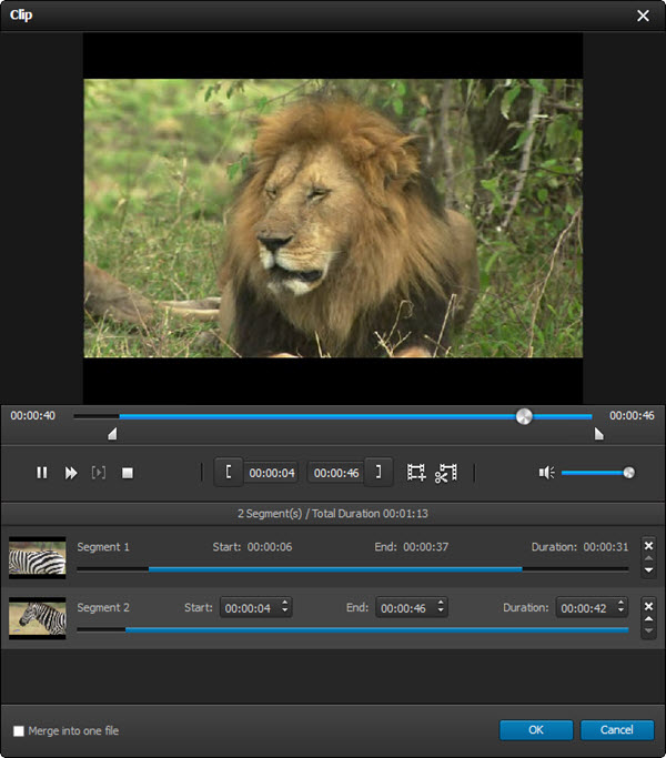 Personalizr su video como desee