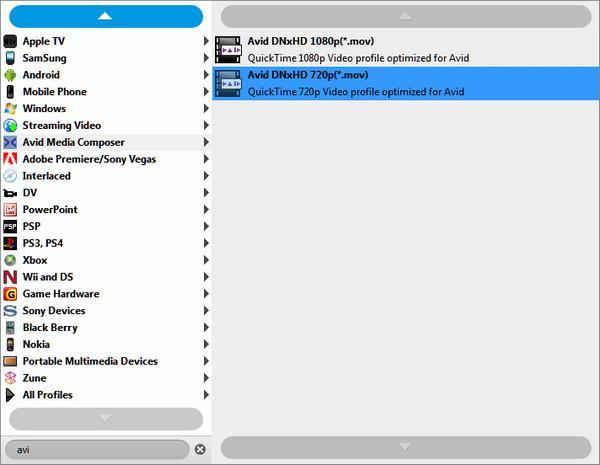 Seleccionar el formato de conversión para pasar Mp4 FLIP
