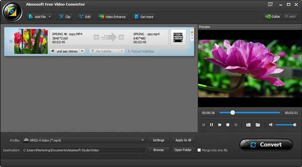 Previsualizar el video importado