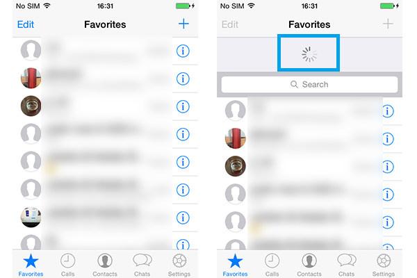 Adicionar Contatos WhatsApp iPhone FoneTrans