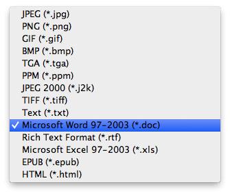 Seleccionar el formato de conversión del Word