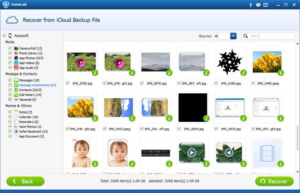 Seleccionar la categoria Archivos adjuntos de mensajes