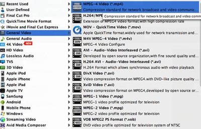 Seleccionar el formato MP4 en la lista de perfiles