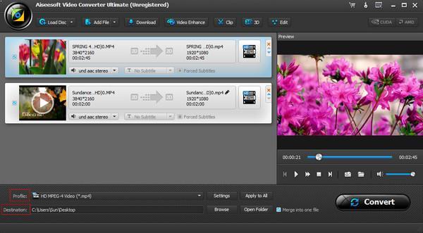 Seleccione un formato para su video