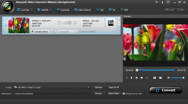 Abrir su video en el programa