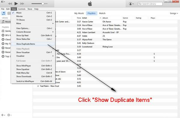 Hacer clic en Mostrar Itens Duplicados