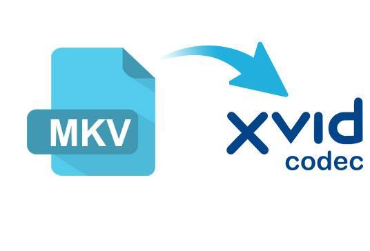 MKV a XviD