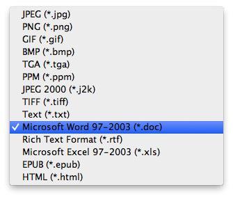 Seleccionar el formato DOC para conversión