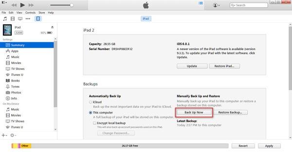 Efectuar una copia de seguridad de su iPad