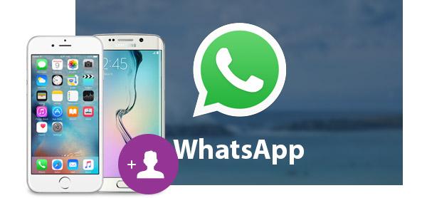 Adicionar Contatos WhatsApp FoneTrans