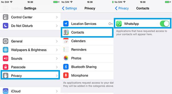 Contatos WhatsApp não aparecem iPhone FoneTrans