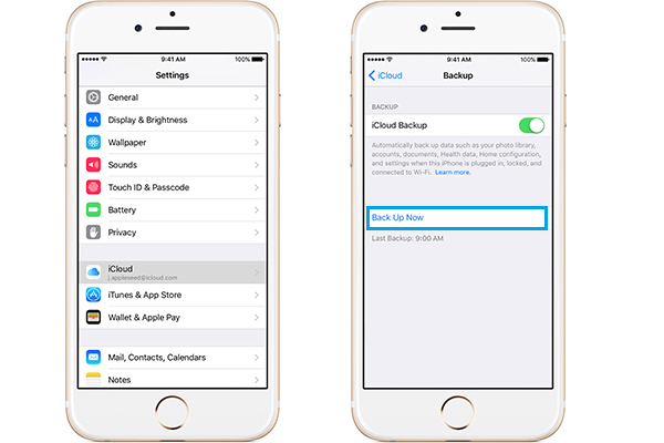 Copia de seguridad manual fotos iCloud