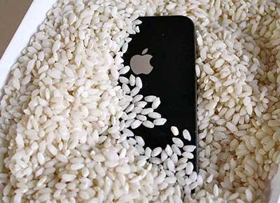 iPhone no arroz para secar