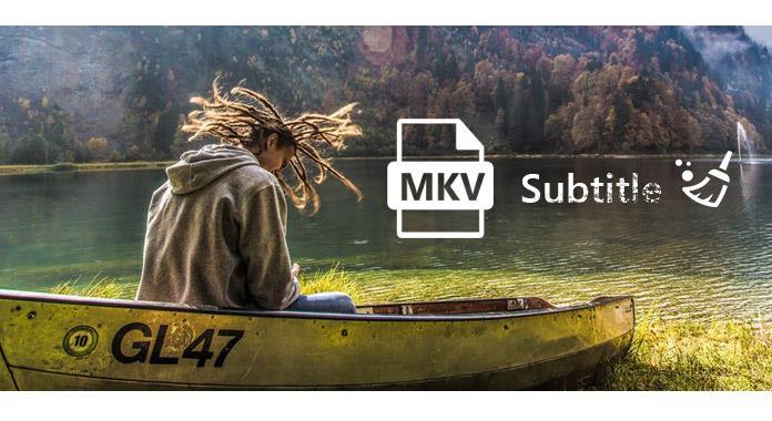 Extraer subtítulos desde MKV