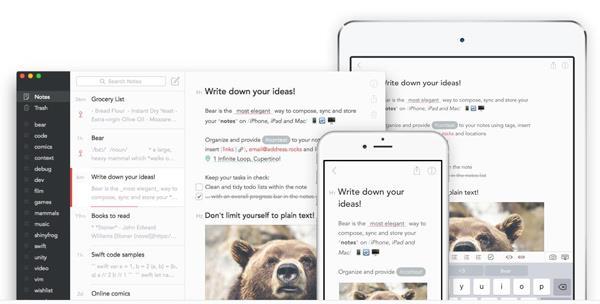 Bear Write