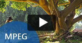 Reproducir videos MPEG