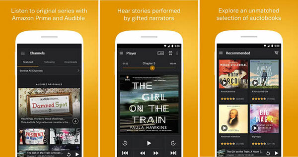 Audible Audiobook Player